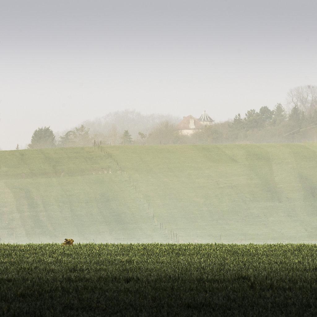 Paysage-poetique-Carre-Couleurs-MG-4260.jpg