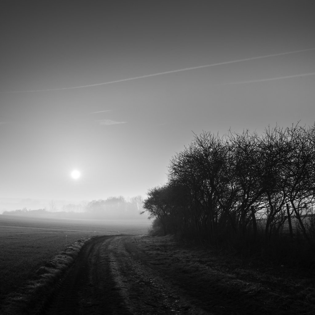 Paysage-poetique-carre-NB-MG-4246.jpg