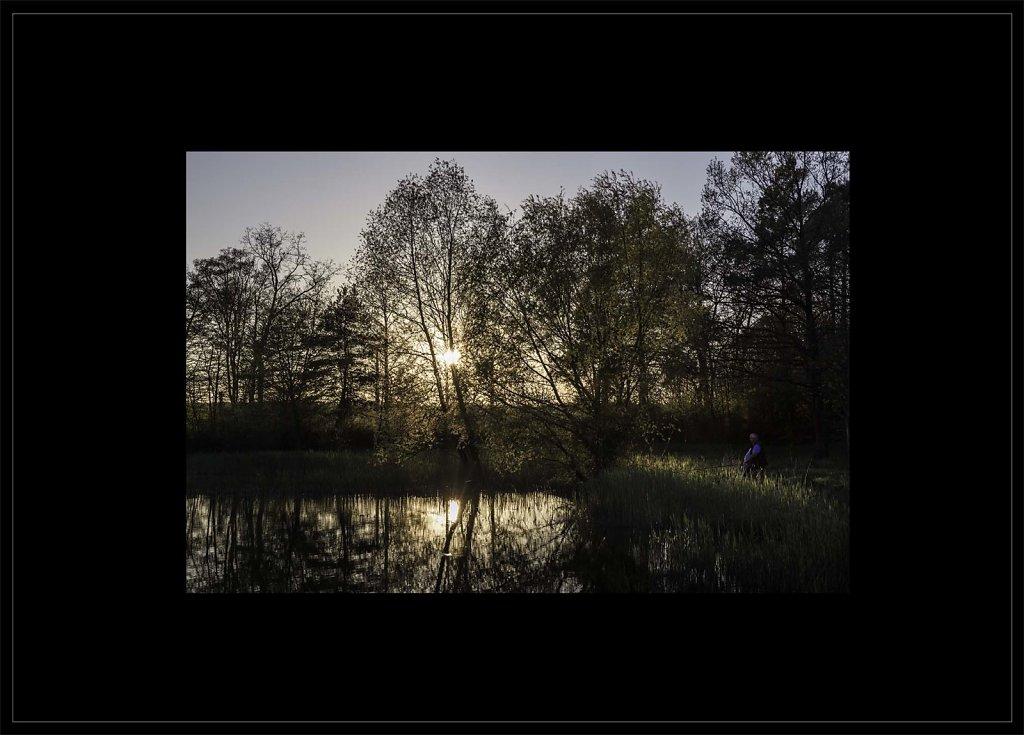 Coucher-de-soleil-sur-Bois-la-Generose-paysages-poetiques-couleur-50x70.jpg